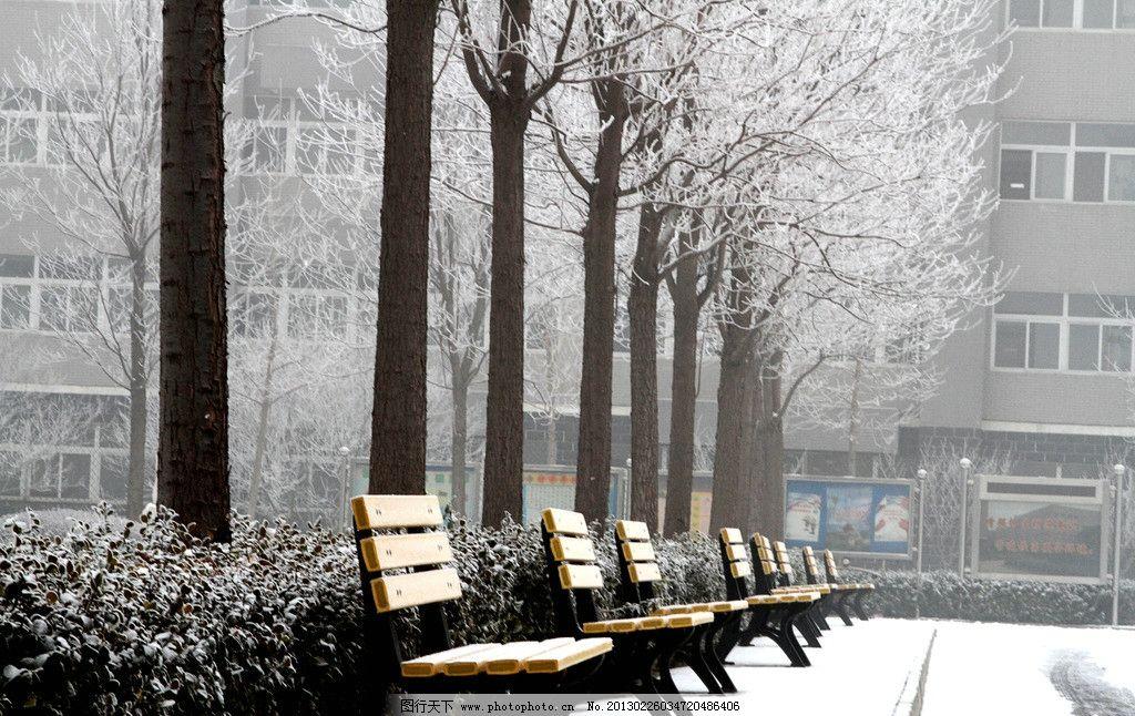 校园意境 学校 校园 白雪 建筑 校园文化 白树 座椅 休闲 雪景 建筑