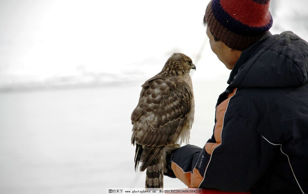吉林市雾凇岛满族放鹰人 吉林市 雾凇岛 满族 放鹰人 传统 自然风景