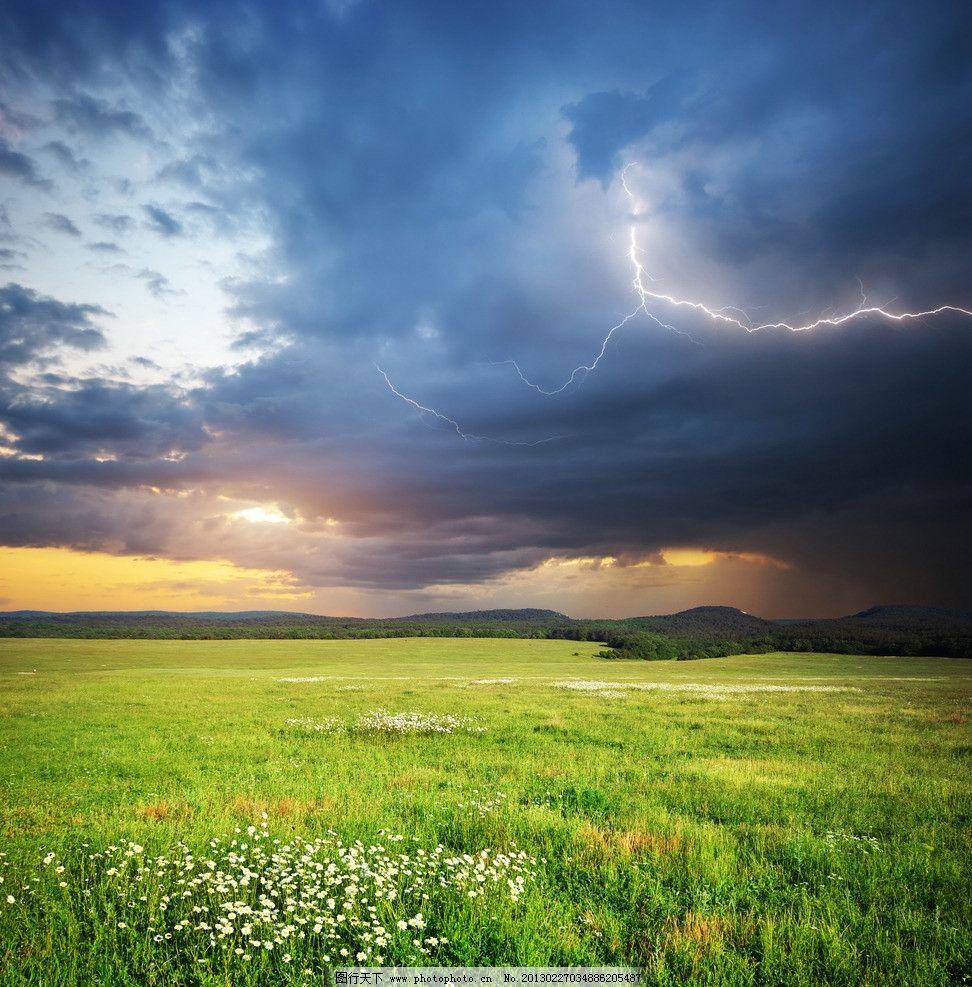 唯美 野花/夕阳下的唯美草原野花图片
