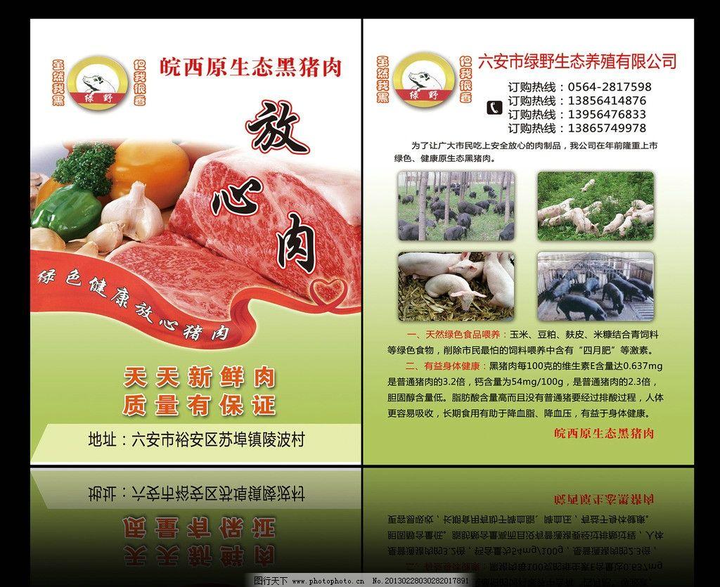 养猪宣传单 蔬菜 绿色 黑猪 白猪 养殖宣传单模板 养殖模板 广告设计