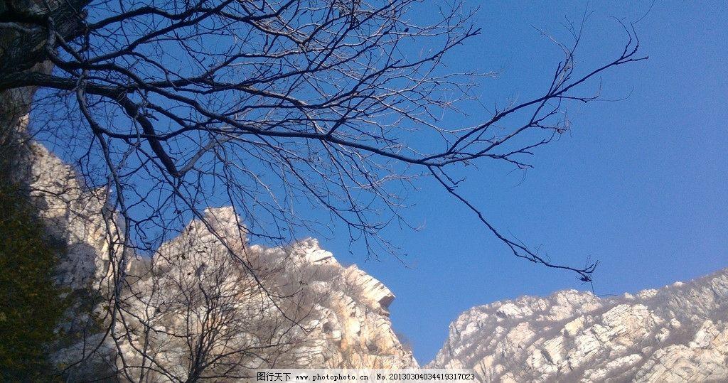 峭壁树枝 石头 峭壁 树枝 山 蓝天 自然 嵩山 山水风景 自然景观 摄影