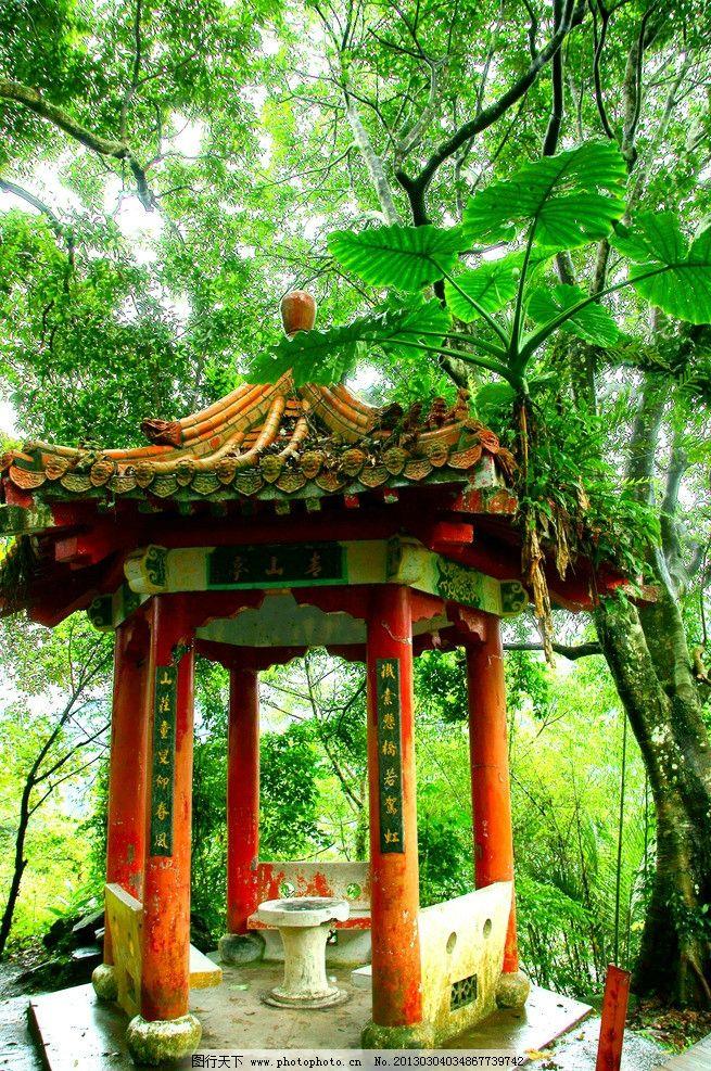 亭子 园林 树林 大树 屋檐 古建筑 公园 自然风景 自然景观 摄影 300d