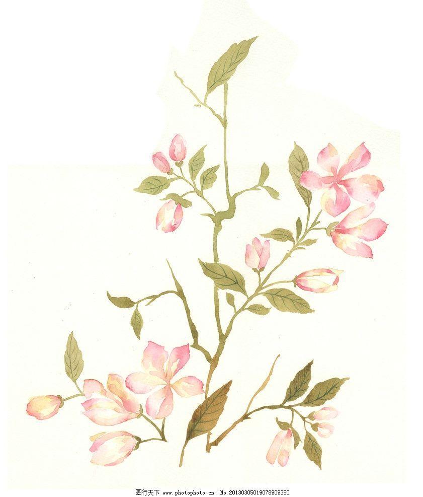 手绘花卉 花卉 叶子 花 绘画书法 文化艺术 设计 300dpi jpg