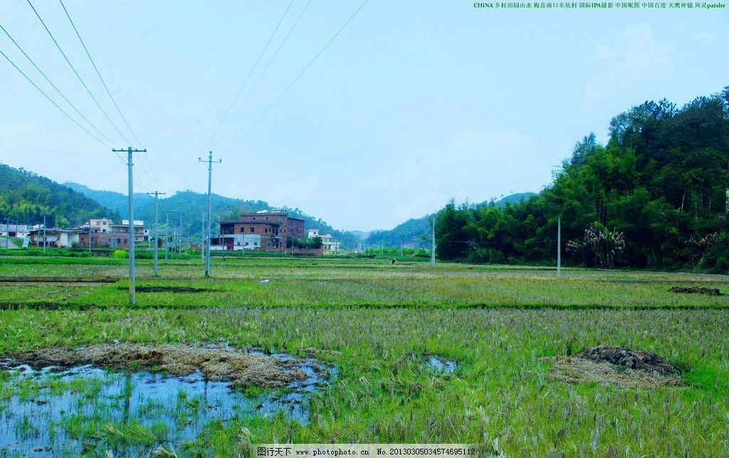电杆 电线 竹林 树木 民居 民房 山岚 天空 田园风光 自然景观 摄影