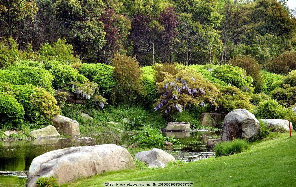 小溪 景观石 灌木丛 紫藤 草地 园林建筑 建筑园林 摄影 3146dpi tif