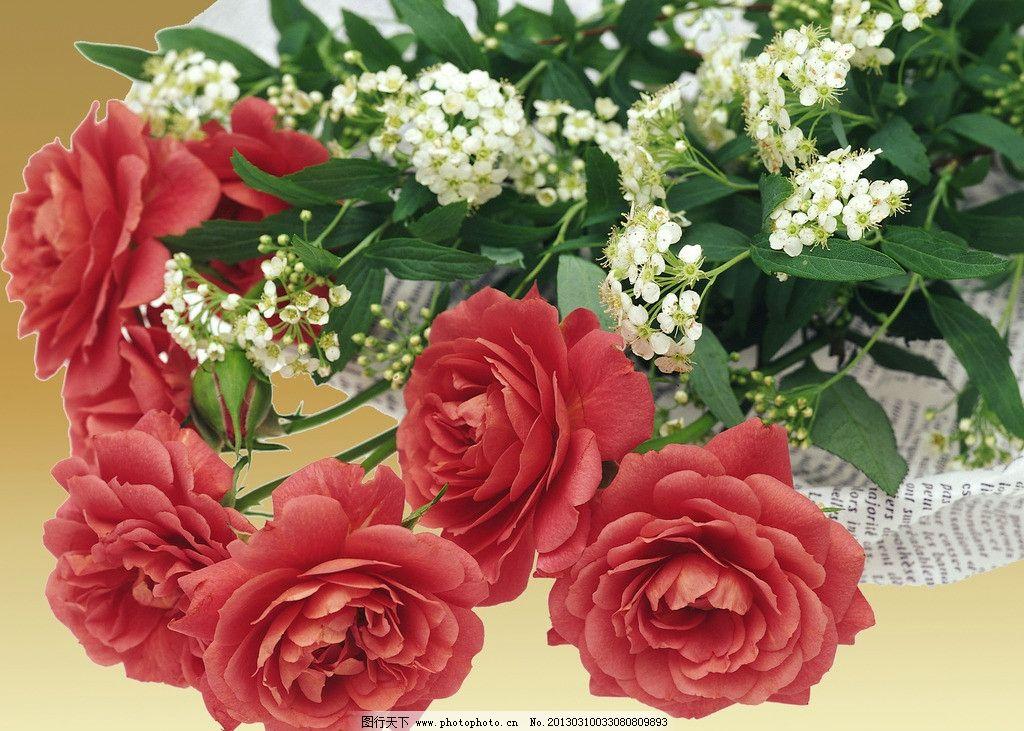 壁纸 花 花束 鲜花 桌面 1024_731图片