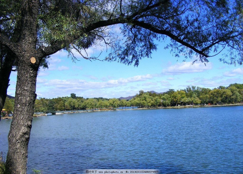 公园湖水 园林 大树 树林 蓝天白云 自然 摄影