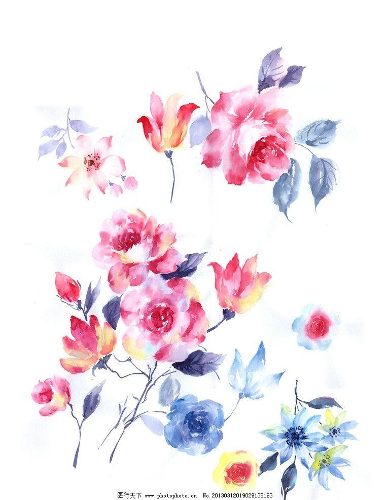 手绘花卉 花卉 花 红色
