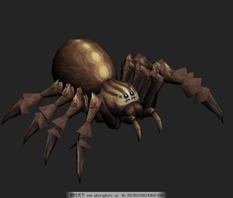 狼蛛 蜘蛛 节肢动物 四个眼睛 有毒 源文件