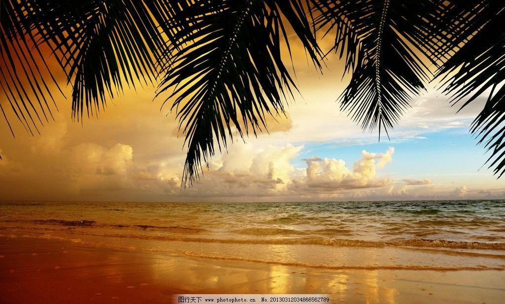 大海 椰子树 夕阳 黄昏 傍晚 天空 晚霞 海滩 自然风景 自然景观 摄影