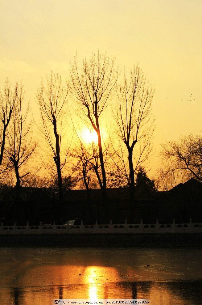 日落树剪影 胡同 枯树 倒影 冰湖 景观 建筑摄影 建筑园林
