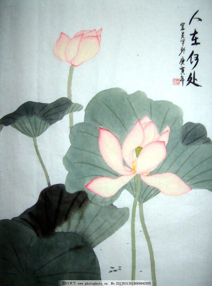 水彩国画 水墨画 国画 花 莲花 莲叶 水彩线描 绘画书法 文化艺术