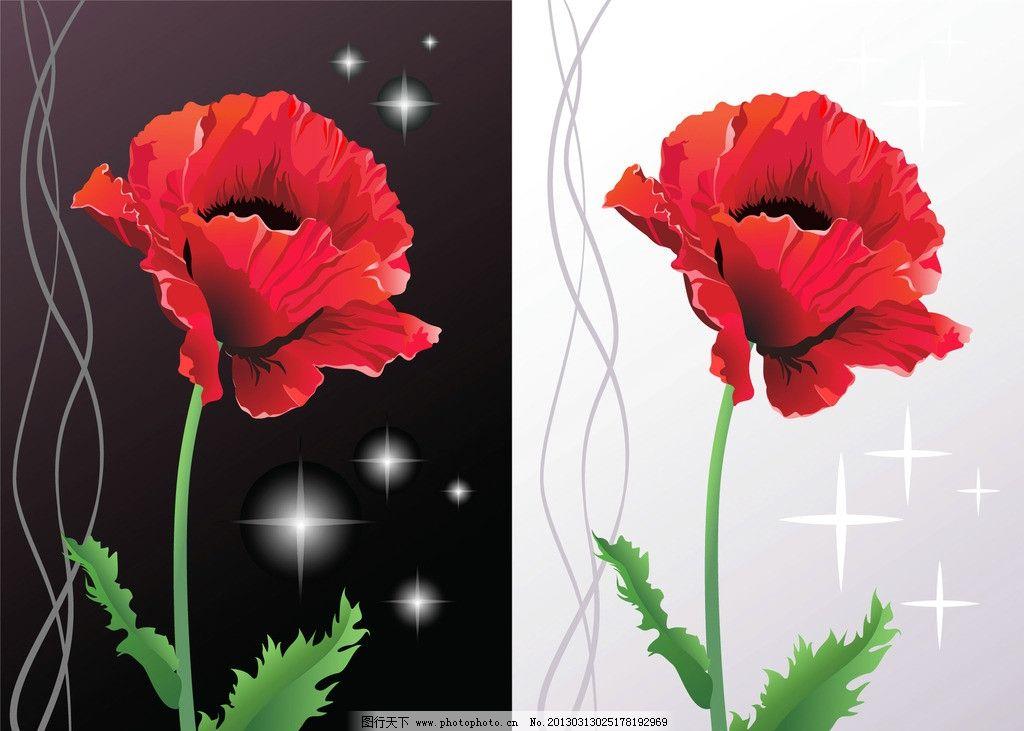 花草  虞美人鲜花花卡 时尚 潮流 梦幻 虞美人 鲜花 花纹 花朵 花卉