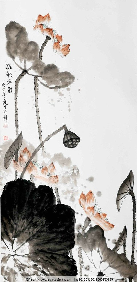 水彩国画 水墨画 国画 水彩画 花 莲花 莲叶 莲蓬 绘画书法 文化艺术