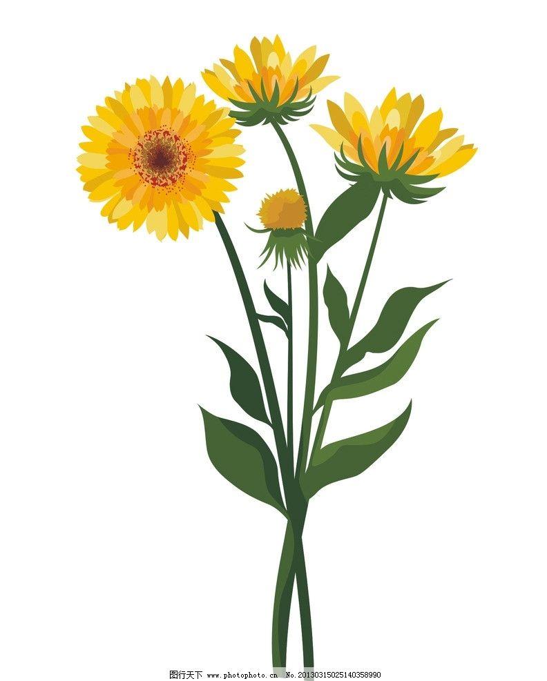向日葵矢量图 黄色葵花 绿叶葵花 矢量图案 底纹背景 向日葵花纹 花草