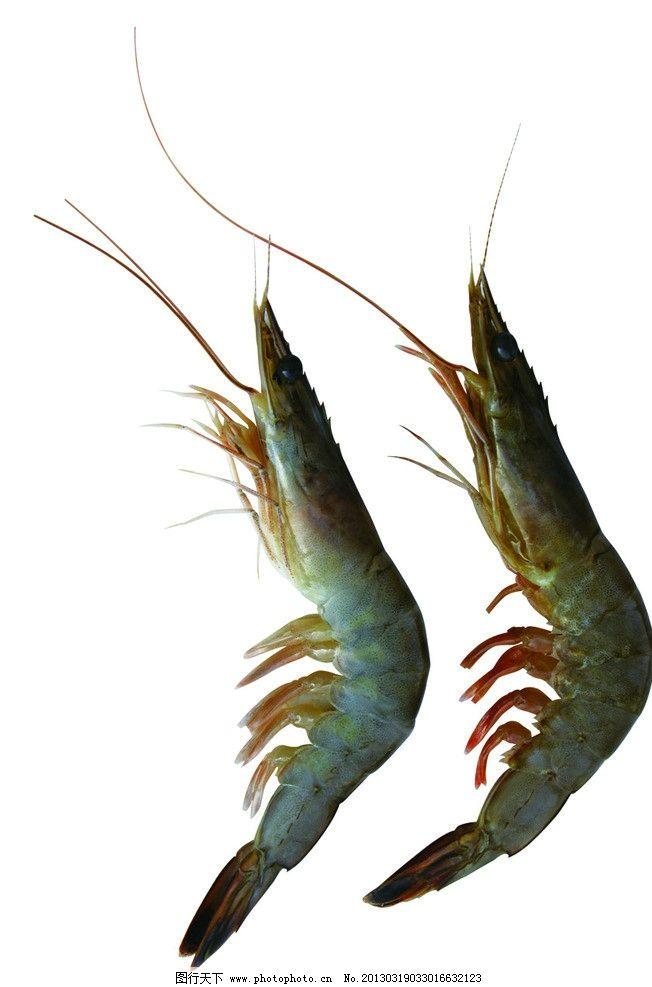 青岛海鲜对虾图片