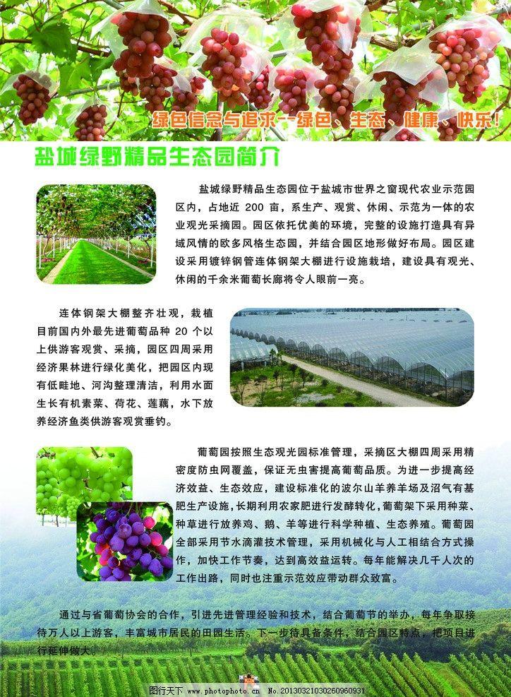 生态农业图片_展板模板_广告设计_图行天下图库
