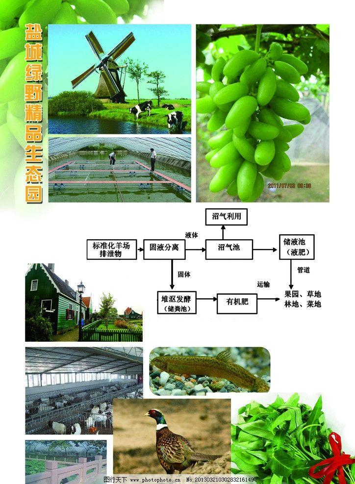 农业生态园图片_展板模板_广告设计_图行天下图库