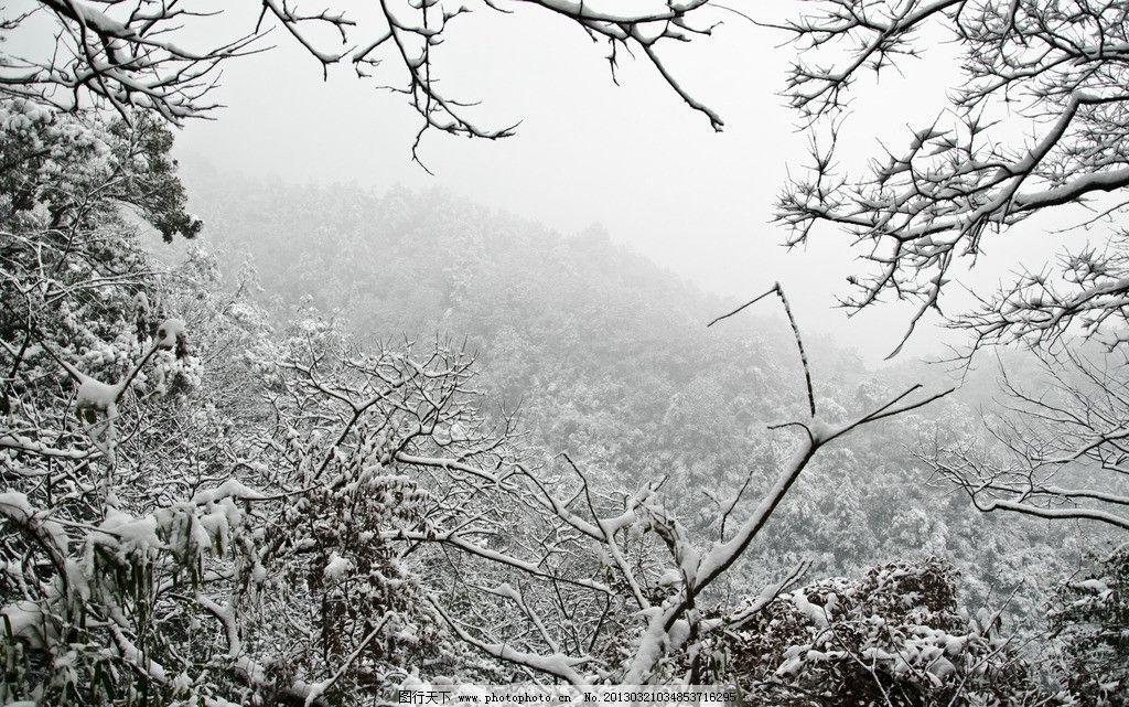 雪景 天空 山 山谷 森林 树木 树枝 积雪 下雪 雪天 枝头雪