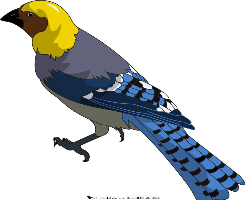 鸣禽 鸟 动物 卵生 手绘 电脑绘画 绘画书法 文化艺术 设计 72dpi png