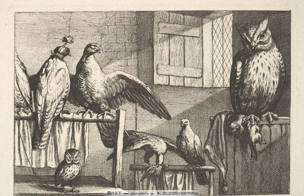 铜版画 版画 欧洲 钢笔画 装饰画 黑白 线条 鸟类 老鹰 鸟 美术馆藏品