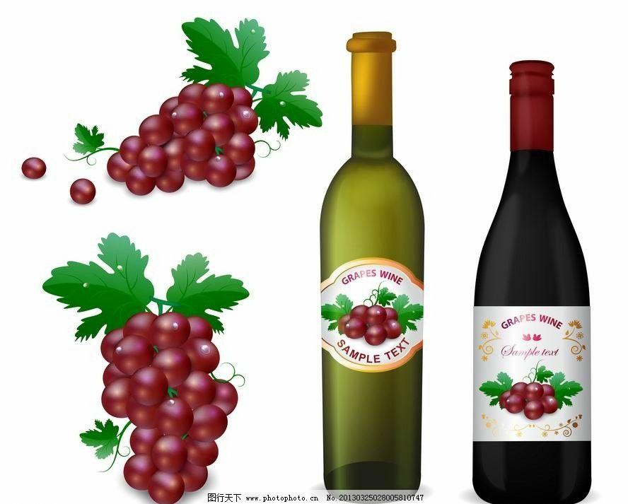 葡萄葡萄酒 葡萄酒 红酒 葡萄 酒标签 品牌 认证 质量 手绘 装饰 设计
