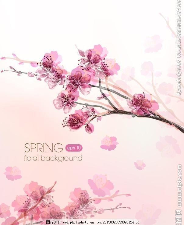 花枝 盛开 春天 梅花 阳光 光线 条幅 模板 背景 精美 花卉 时尚花纹