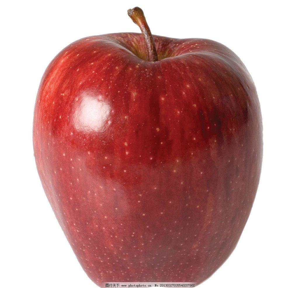 苹果 苹果树 果枝 水果 绿叶 叶子 生物世界 摄影 72dpi jpg