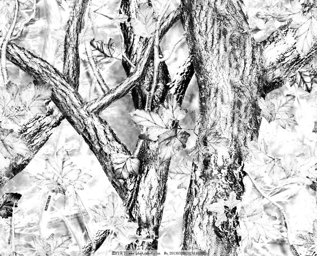 树干 树皮 树枝 大树 背景底纹 底纹边框