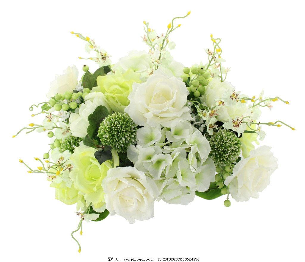 韩式简约花朵图片