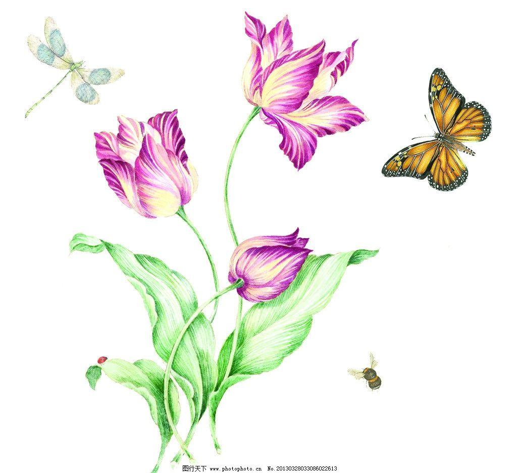 花卉 花 绿叶 植物 动物 蝴蝶 蜻蜓 蜜蜂 金甲虫 ps通道分层 psd分层