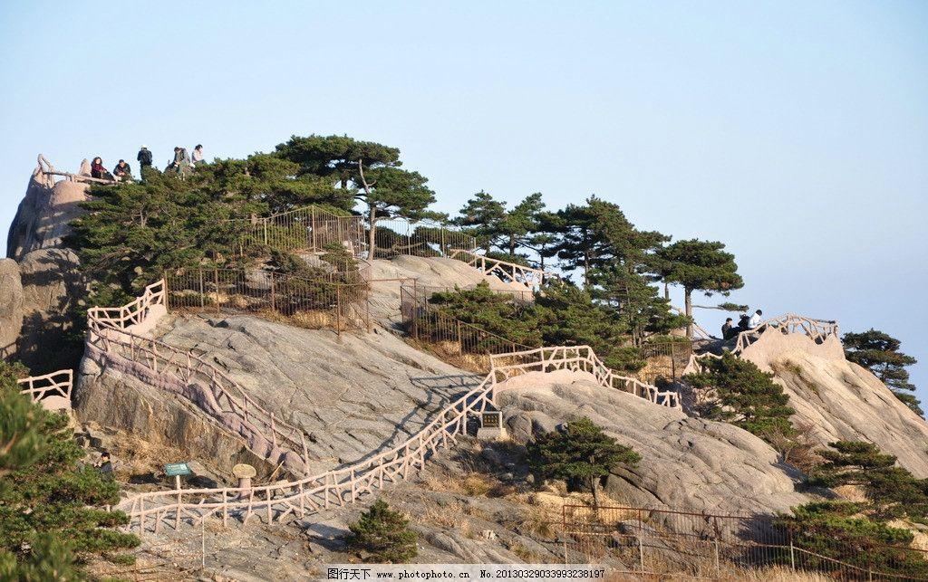 安徽黄山图片,黄山松树 岩石 风景 安徽旅游 风