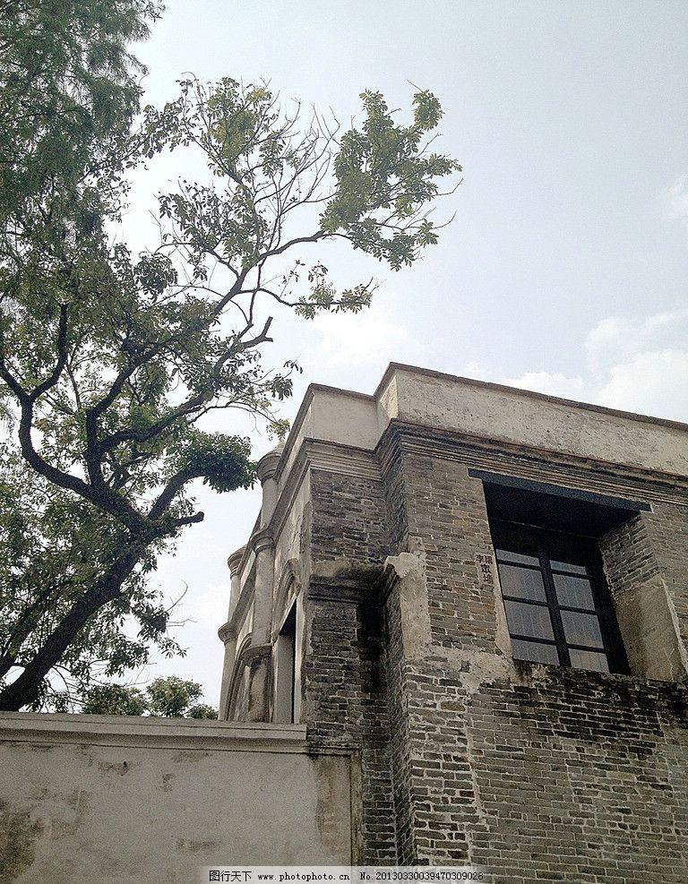 大樹與老房子 大樹 老房子 老樓 古建 嶺南建筑 佛山 老建筑 廣東