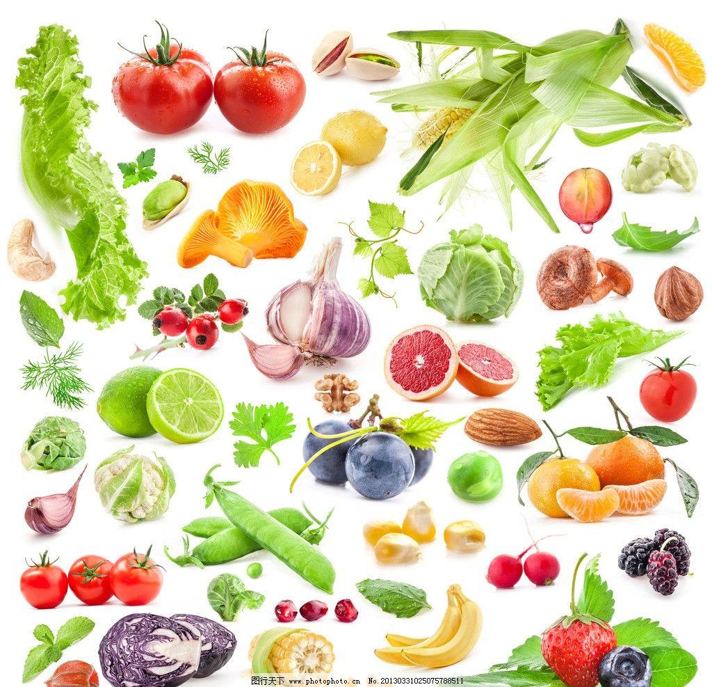 水果蔬菜素材 水果 蔬菜 番茄 玉米 大蒜 青椒 生物世界 设计 300dpi